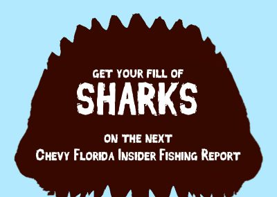 Shark Jaws with the text Get Your Fill of Sharks on the Next Chevy Florida Insider Fishing Report